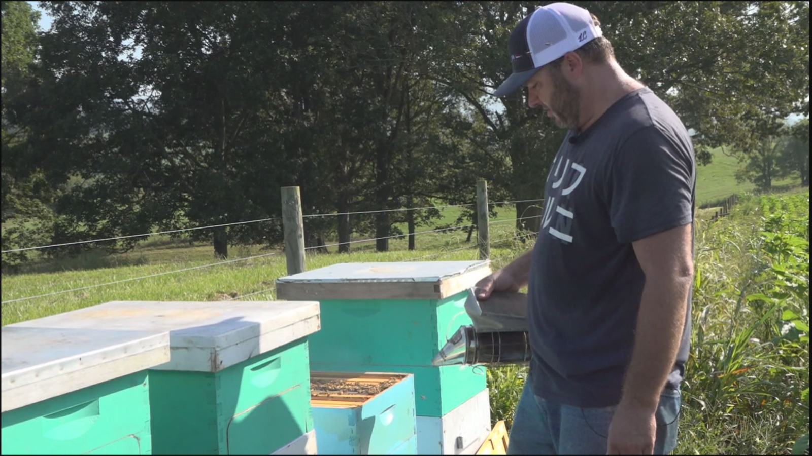 Grown Here at Home: Bees are a buzzin' at Beaver Dam Farm in Botetourt County